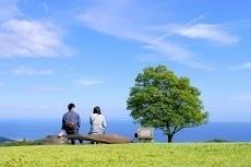 一週間フレンズ 映画 動画フル.jpg